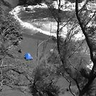Blue Tent in Black by Alex Simpson