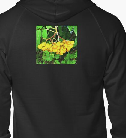 Yellow Berries Zipped Hoodie