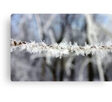 Flakes View Canvas Print
