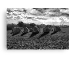 ancient stones in black and white Canvas Print