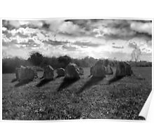 ancient stones in black and white Poster