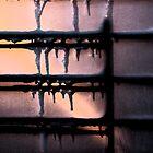 Winter Window... by Christina Rodriguez
