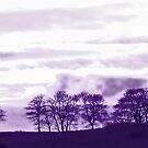 Pano purple trees by sarnia2