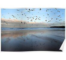 Ballybunion seagulls over Ballybunion beach Poster