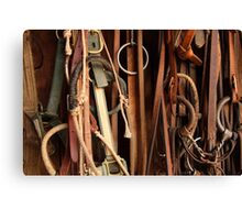 Tack Equipment Canvas Print