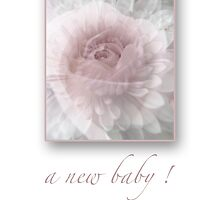 a new baby ! by notecards