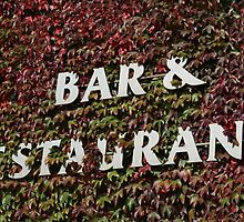 bar and restaurant sign by morrbyte