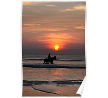 bathing beauties at sunset Poster