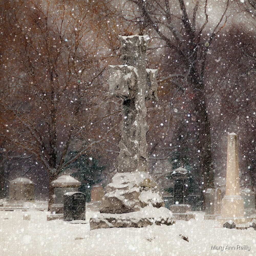 Snow is Falling by Mary Ann Reilly