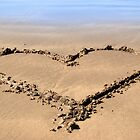 beachy love heart by morrbyte