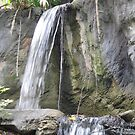 Waterfall at Busch Gardens, Tampa, FL by Debbie Robbins