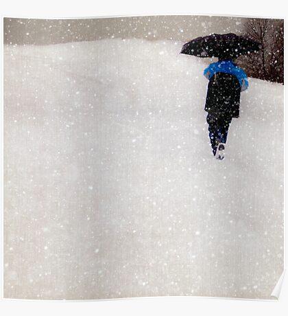 Snow is Fleeting Poster