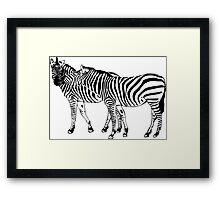 Zebra Love Framed Print