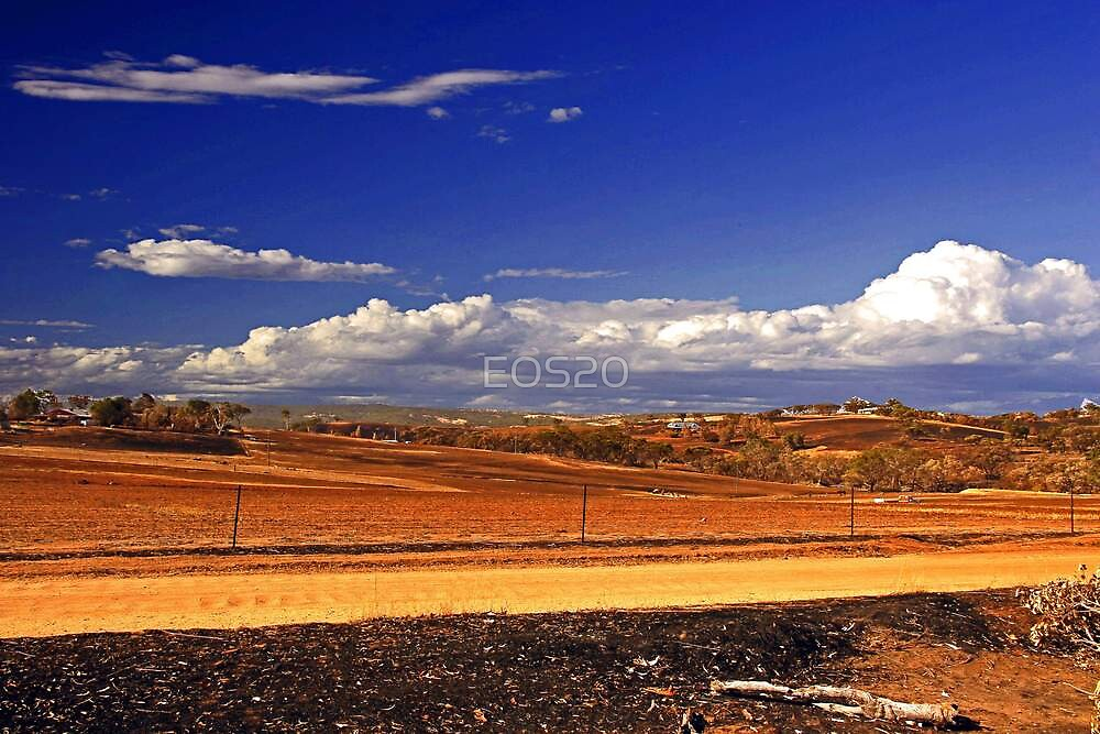 Toodyay After The Bushfire by EOS20