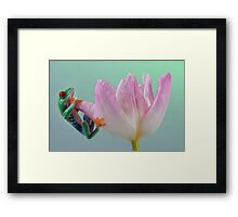 Pastel colours Framed Print