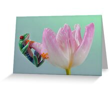 Pastel colours Greeting Card