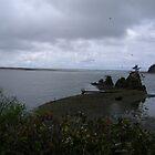 Oregon coast ~  Lincoln City.... by Lonnie Ornie