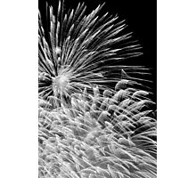 Firework Explosion (Black & White) Photographic Print