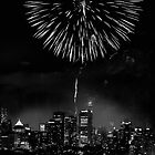 Night Flower over Smokey City by Richard Lam