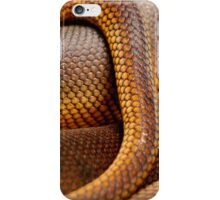 Texture Detail of Coiled Snake Skin Scales Pattern iPhone Case/Skin