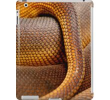 Texture Detail of Coiled Snake Skin Scales Pattern iPad Case/Skin