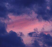 Purple Winter Sky by Gene Walls