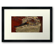 Family Sing Along!  (Barn Swallows) Framed Print
