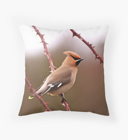 And finally, third of three Throw Pillow