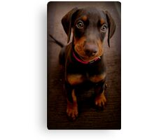 There are treats! I know there are treats! Canvas Print