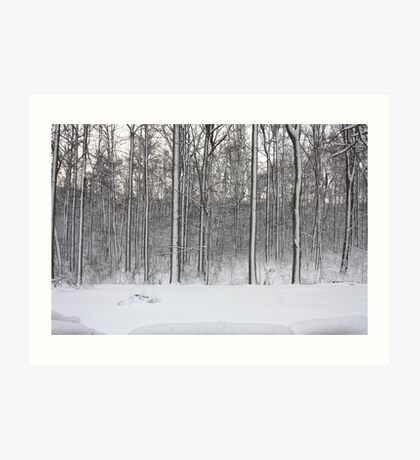 Snowstorm Aftermath Art Print