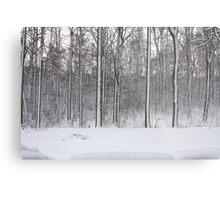 Snowstorm Aftermath Metal Print