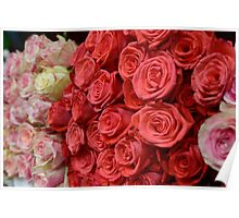 Bouquet of roses. Poster