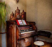 Music - Organ - Hear the Joy  by Mike  Savad