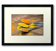 Warm Orange and Yellow Indian Cooking Spices on Silver Spoons Framed Print
