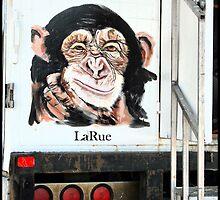 Monkey   by luckylarue