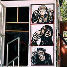 Monkey  business by luckylarue
