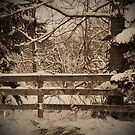Fence and Snow by ericseyes