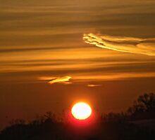 Good Morning World!! by barnsis
