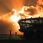 Farewell Sunset by Rosalie Scanlon