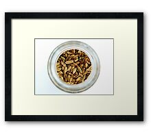Aromatic Exotic Striped Indian Cuisine Fennel Seeds in Jar Framed Print