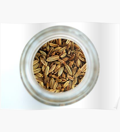 Aromatic Exotic Striped Indian Cuisine Fennel Seeds in Jar Poster