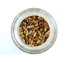 Aromatic Exotic Striped Indian Cuisine Fennel Seeds in Jar Photographic Print