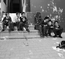 school boys. northern india by tim buckley | bodhiimages