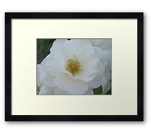 A Kiss Without A Hug Is Like A Flower Without A Fragrance  Framed Print