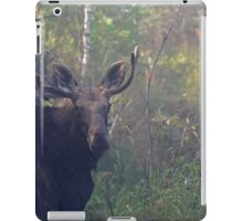 Maine Bull Moose in the woods at dawn iPad Case/Skin