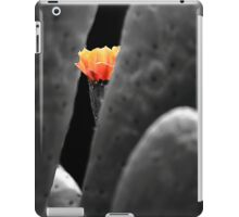 Beauty and the beast. iPad Case/Skin