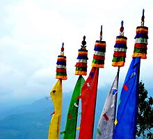 Buddhist Flags by naveenbanga