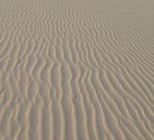 Sand dunes by Milonk
