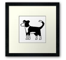 Border Collie Framed Print