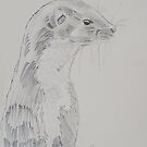 Weasel Pencil Drawing - On High Alert by MikeJory